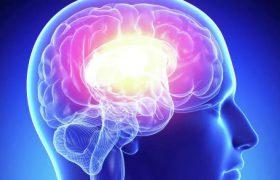 В 60 лет наступает пик активности работы мозга