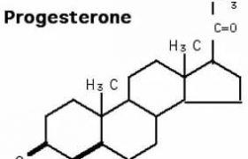 Прогестерон способен лечить тяжелые травмы мозга