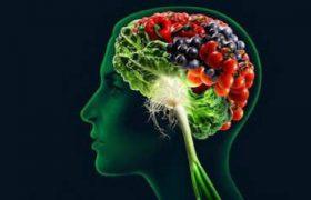 Важные продукты для правильного функционирования мозга