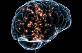 Ученые доказали, что мозг одинаково реагирует на полученные деньги и похвалу