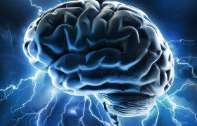 Человеческий мозг придает большее значение написанным словам, чем воспринимаемой эмоциональной информации