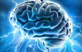 Неврологи выяснили, как мозг учится на чужих ошибках