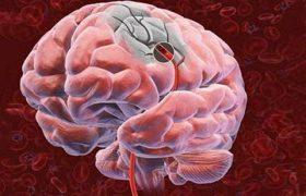 Органическое поражение головного мозга: причины и признаки