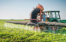 Пестициды негативно влияют на работу головного мозга человека