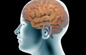 """Ученые объяснили феномен """"застывания"""" у страдающих болезнью Паркинсона"""