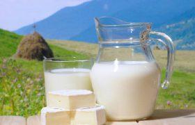 Молоко разрушает мозг?