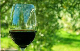 Бокал вина в день защитит от инсульта
