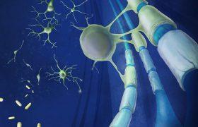 Рассеянный склероз можно лечить средством от аллергии