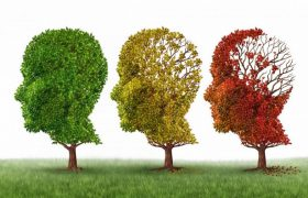 Исследование: образование спасает от Альцгеймера