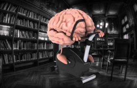 Качай мозги: всего 15 минут в день