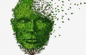 Швейцарские ученые могут остановить болезнь Альцгеймера