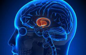Определен первый признак болезни Альцгеймера