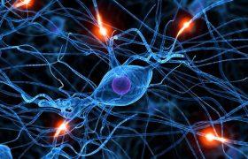 Ладан помогает в лечении рассеянного склероза