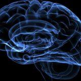 Электрическая стимуляция мозга помогает улучшить память