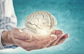 Ученые: в человеческом мозге есть Wi-Fi