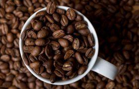 Уровень кофеина в крови поможет засечь болезнь Паркинсона