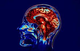 Ученые успешно испытали протез памяти
