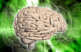 Отсутствие определенного вещества в мозге может указать на риск развития болезни Альцгеймера