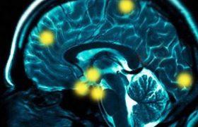 Какой процент нашего мозга мы используем