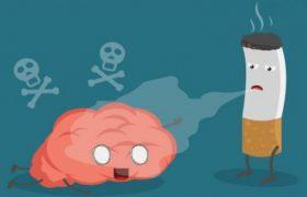 5 важных фактов о курении и здоровье мозга
