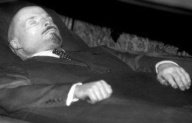 Как советские ученые изучали мозг Ленина