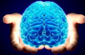 Опасность аневризм сосудов головного мозга: что это такое и чем грозит