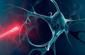 Клетка кипения, или Как заставить нейроны тянуться к теплу