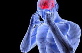 Учёные: Субпродукты улучшают мозговую деятельность