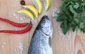 Названа рыба, снижающая риск развития болезни Паркинсона