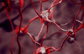 Создан уникальный биоматериал для лечения болезней мозга