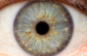 Деменцию можно определить по глазам