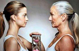 Нейробиологи подсказали, как отстрочить старость