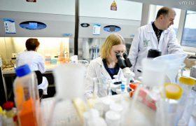 Ученые создали метод диагностики внутриутробного развития мозга