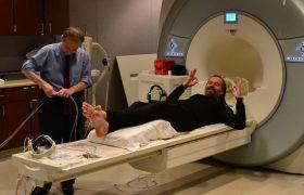 Неврологи раскрыли секрет реакции мозга на боль