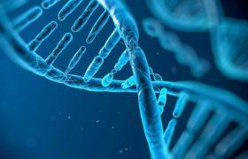Ученые: генная терапия поможет лечить аутизм