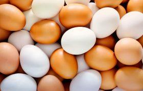 Одно яйцо в день защищает от инсультов