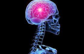 Стало известно, почему у здоровых людей случаются инсульты