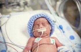 Эстрогены защитят недоношенных детей от аутизма