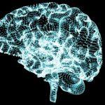 У женщин с большим количеством детей чаще развивается болезнь Альцгеймера