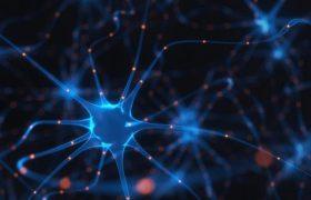 Работа с красками и растворителями повысила риск рассеянного склероза