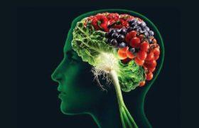 Названы важные продукты для эффективной работы мозга