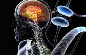 Паркинсонизм усиливает творческие способности человека