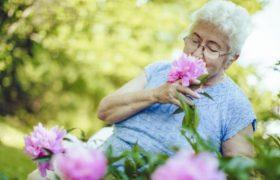 Ухудшение обоняния – сигнал о начале деменции