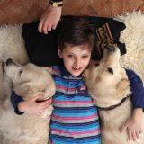 Собаки помогают аутичным детям