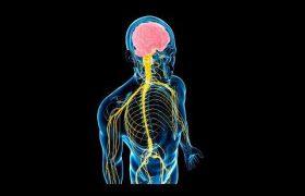 Названы главные признаки заболеваний нервной системы