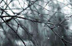 Пасмурная погода грозит неизлечимой болезнью мозга