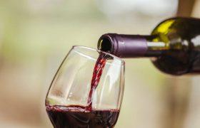 Для мозга опасен полный отказ от алкоголя