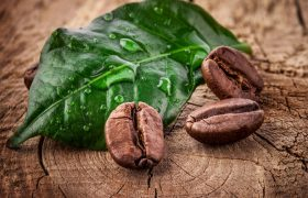 Кофе уменьшает риск развития болезни Альцгеймера