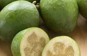 Врачи подсказали, какая ягода может защитить от атеросклероза