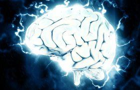 Названо средство против старения мозга